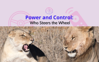 Power and Control: Who Steers the Wheel